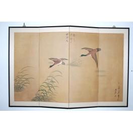 Vikskärm sjöfåglar